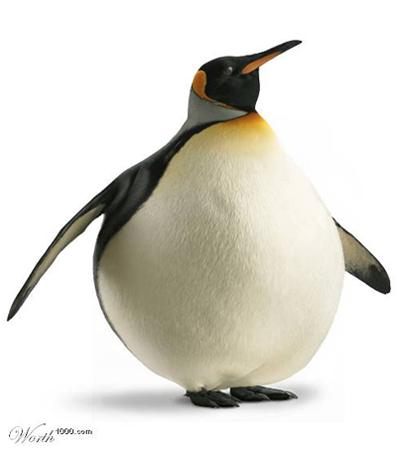 big_linux