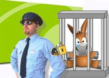 policiap2p