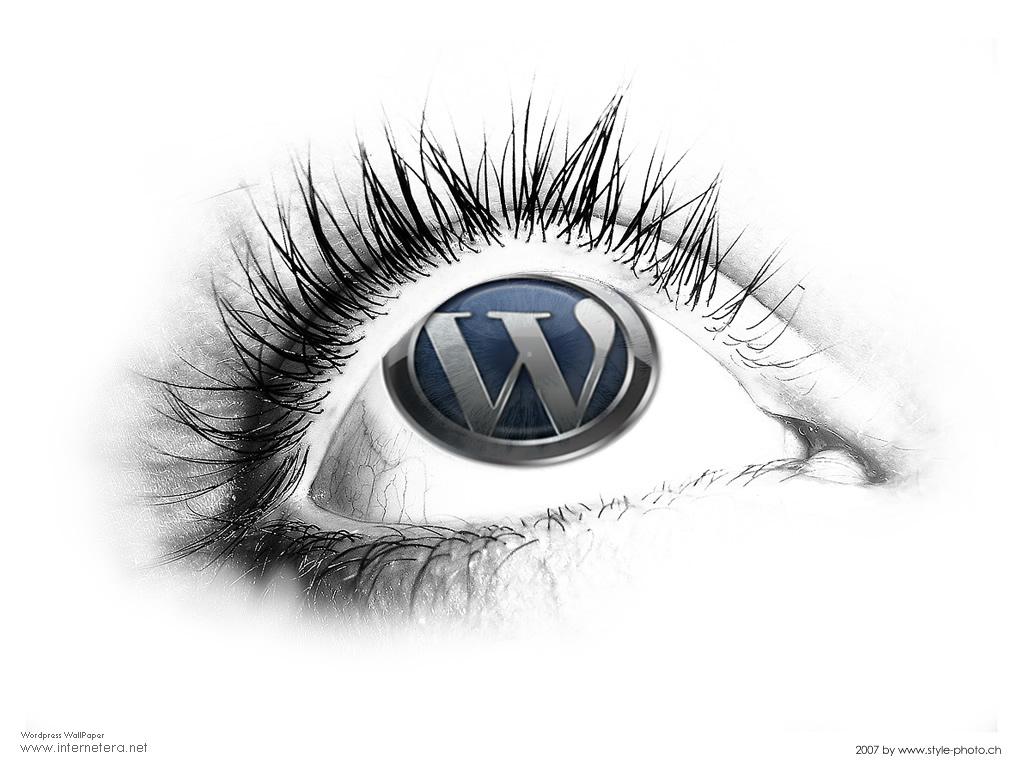Wordpress 2.8.5 disponible et indispensable
