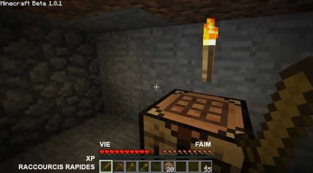 Guide : bien débuter à Minecraft