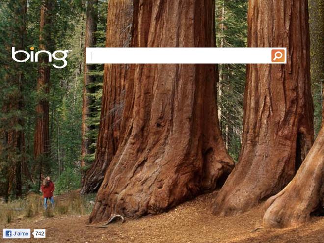 Bing : bientôt de la vidéo HTML 5 en background