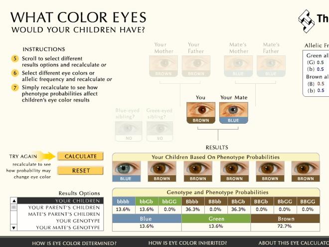 Quelle sera la couleur des yeux de vos enfants ?