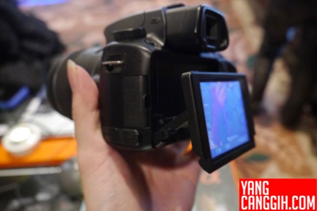 Sony Alpha A37 : les premières photos du prochain reflex de Sony