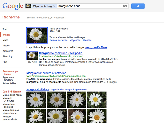 Google améliore sa recherche d'images