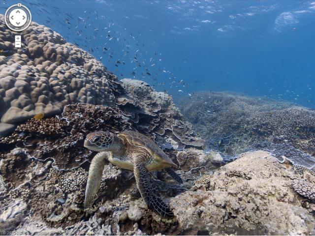 Google Maps permet désormais d'explorer le fond des océans avec Street View