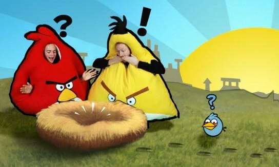 angry-birds-costume-1-544x326