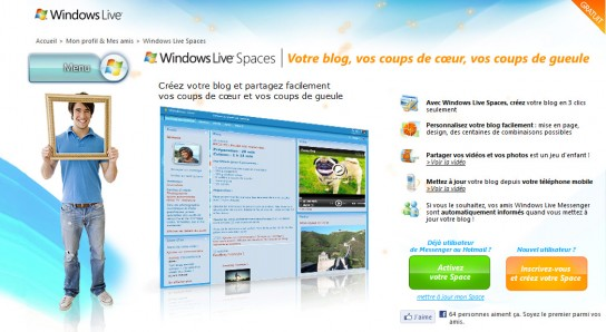 microsoft-wordpress-544x298