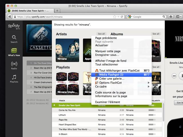 Télécharger de la musique sur Spotify