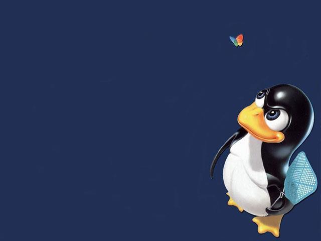Microsoft Office pourrait arriver sur Linux en 2014