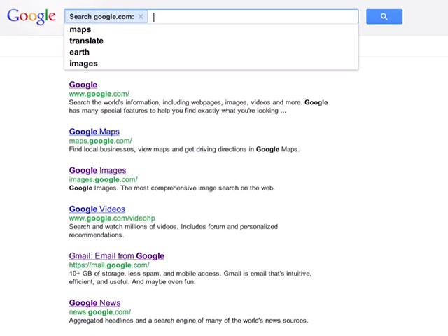 Google Instant Site Search