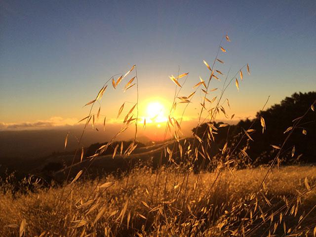 Photos prises avec iPhone 5S : image 5
