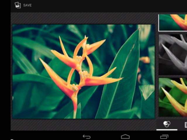 Télécharger APK Galerie + Photo Android 4.4