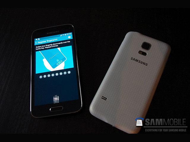 Samsung Galaxy S5 Mini : image 3