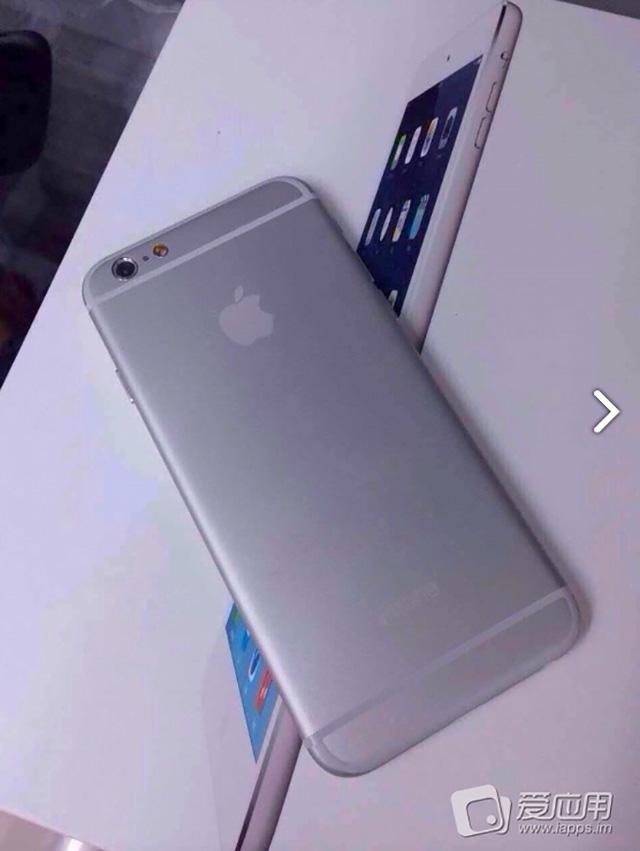 iPhone 6 4.7 pouces : image 4