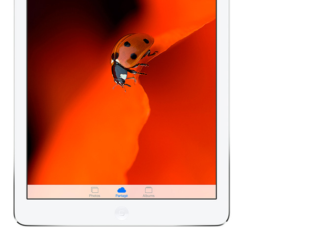 RAM Ipad Air 2