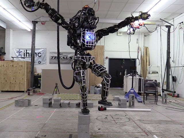 Robot Atlas KarateKid