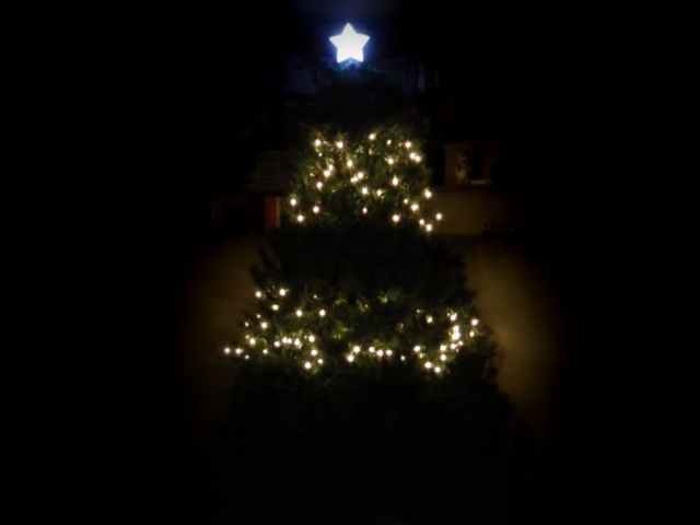 Un sapin de Noël et un Raspberry Pi