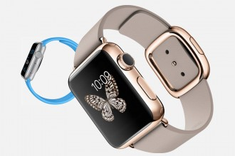 Apple Pay & Watch