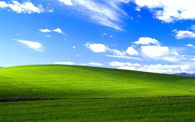 Parts de marché Windows XP