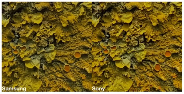 comparatif-sony-samsung-3