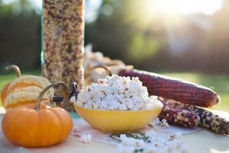 Popcorn Time MPAA