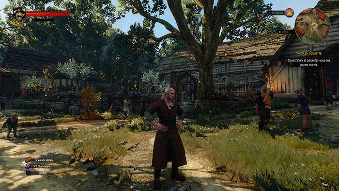 Test DLC Witcher 3 : image 2
