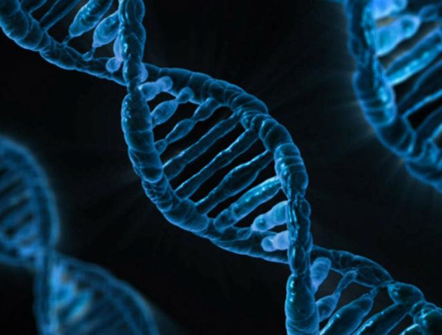 Microsoft entend stocker des tonnes de données dans le futur dans de l'ADN