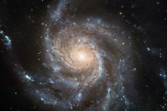 Kepler HS