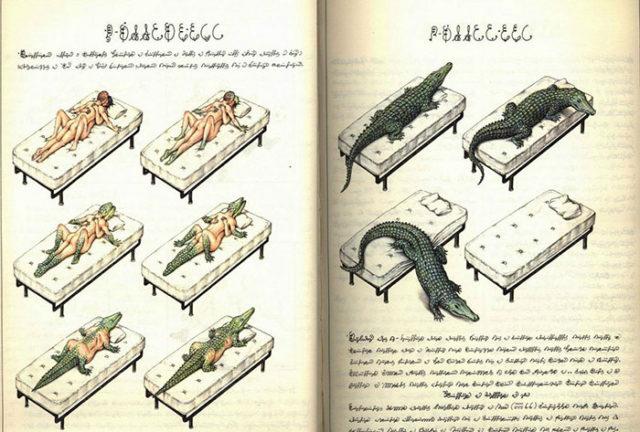 Codex Seraphinianus : image 2