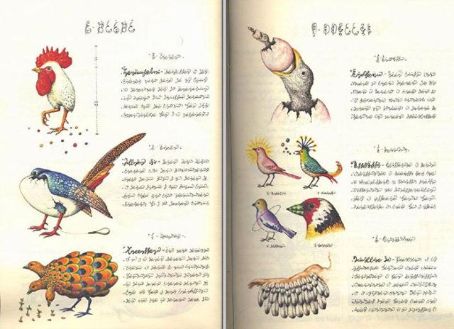 Codex Seraphinianus : image 3