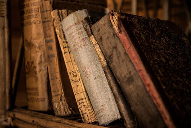 Codex Seraphinianus : image 1