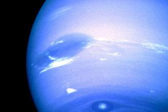 Vortex Neptune