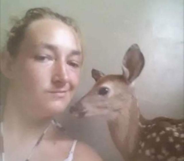Selfie Faon