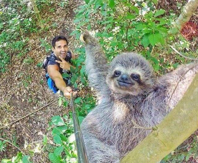Selfie Mignon