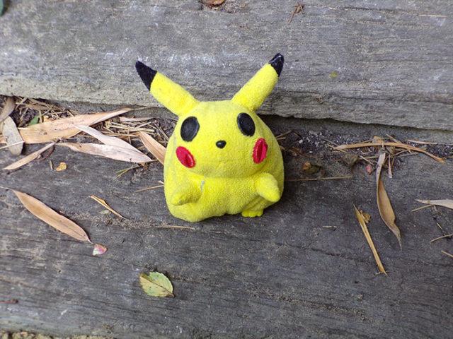 Accident Pokémon Go