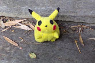 Fin Pokémon Go