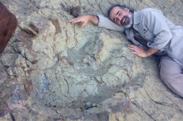 Une gigantesque empreinte de dinosaure découverte en Bolivie
