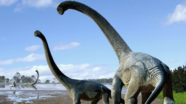dinosaure-australie