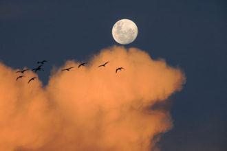 Vivre sur la Lune