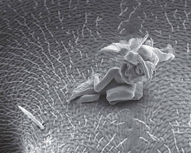 Nano Sculpture