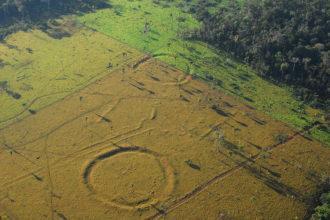 Géoglyphes Amazonie : photo 1