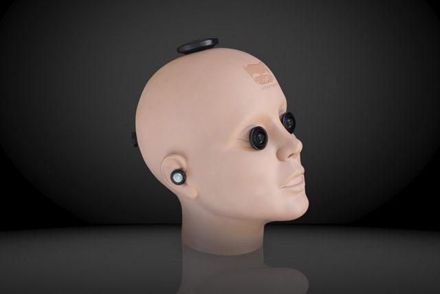 POV Head RIG : image 2