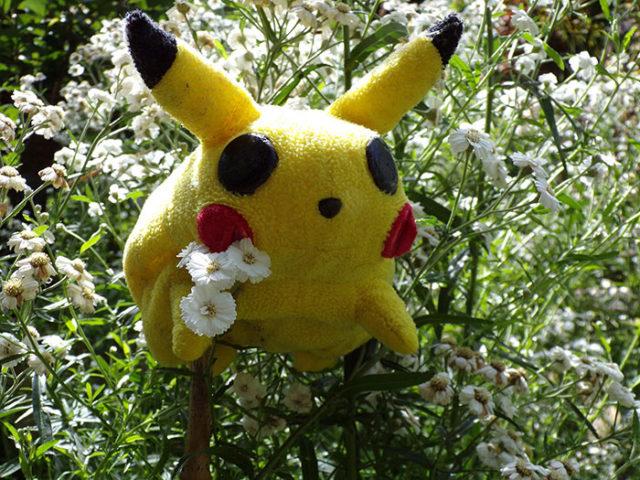 Décès Pokémon