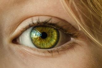 Perception visuelle