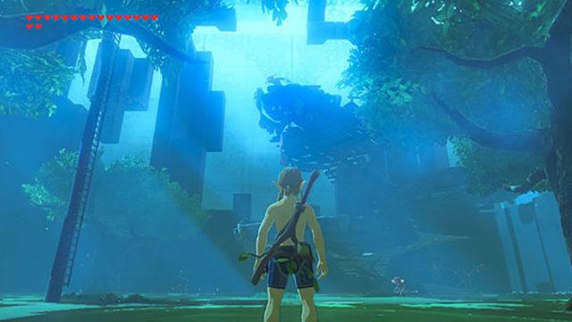 Zelda DLC 1