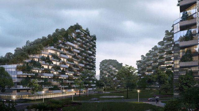 Ville-Forêt Chine : image 2