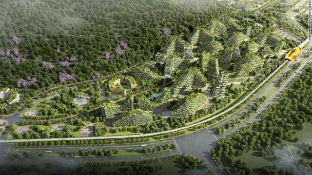 Ville-Forêt Chine : image 3