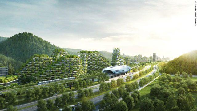 Ville-Forêt Chine : image 4