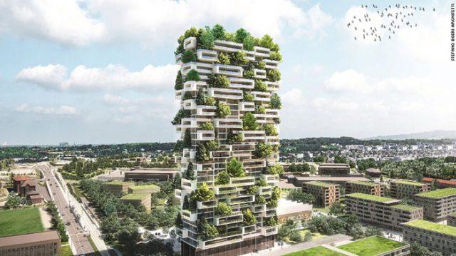 Ville-Forêt Chine : image 6