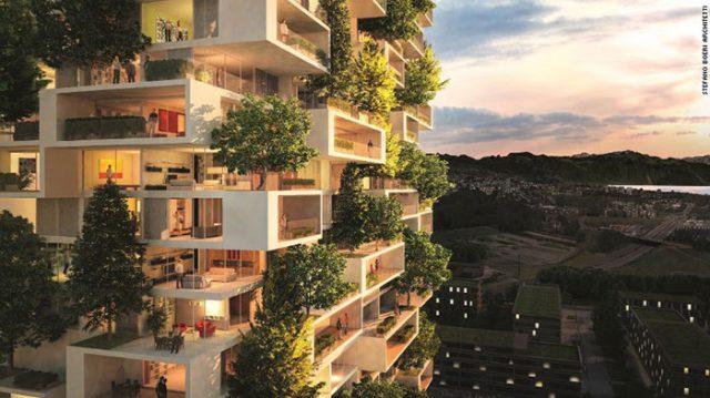 Ville-Forêt Chine : image 7